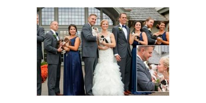 boda con los perros salvados