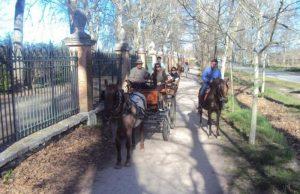 ruta a caballo con carros