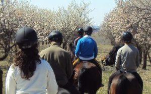 ruta a caballo por madrid